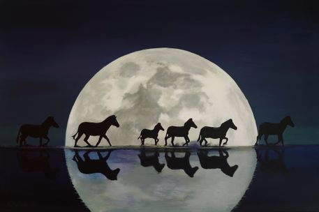 Zebras in moonlight